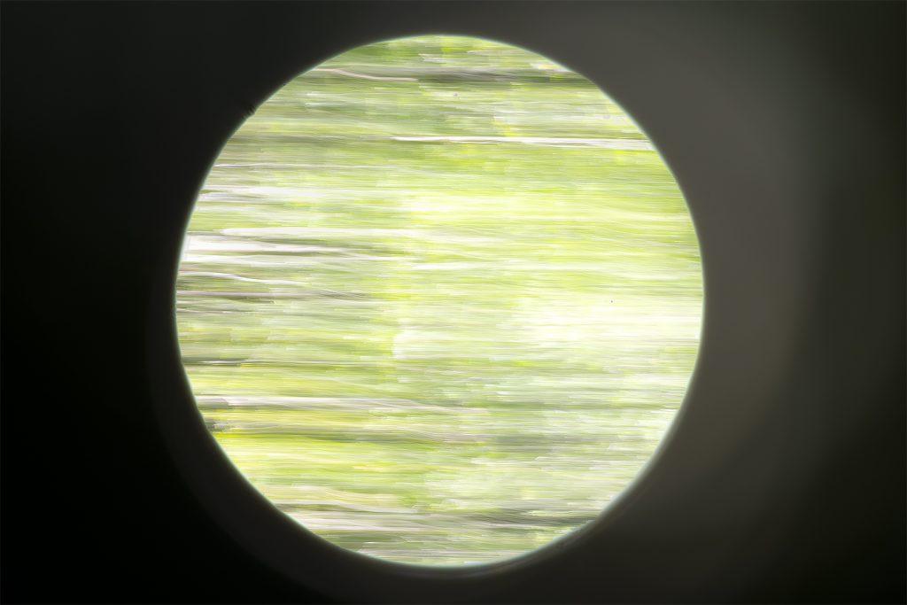 MLM_8041-1